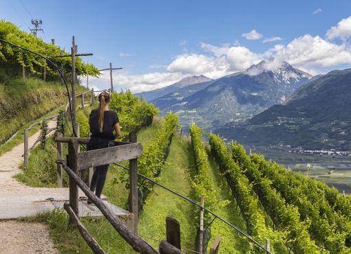 undefined Foto: Südtirol Werbung