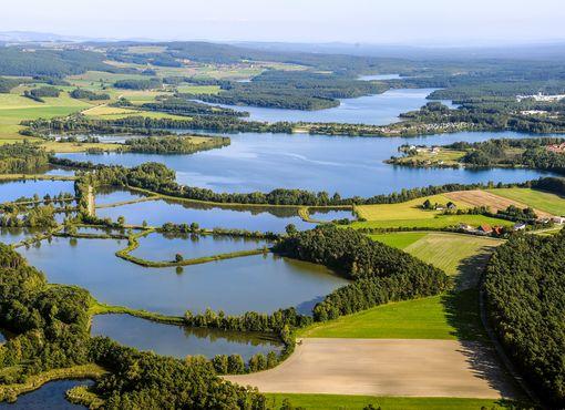 undefined Foto: Oberpfälzer Seenland